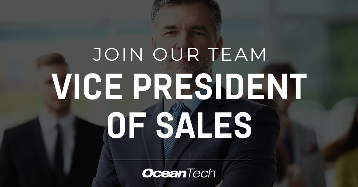Vice President of Sales